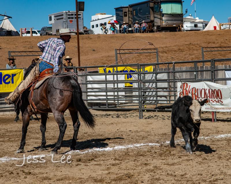 Californio-vaquaro-photos-7686(1).jpg :: Cowboys carring on the traditions of the Vaquero, Californios, Buckaroo ways.