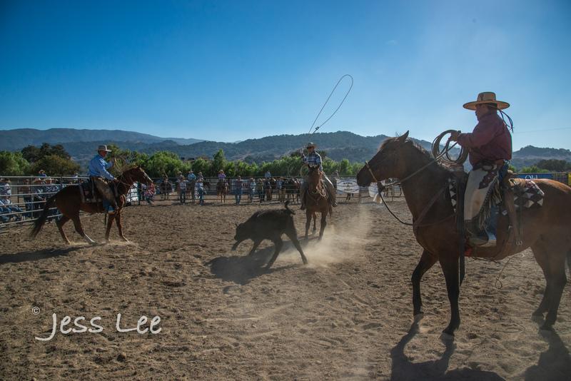 Californio-vaquaro-photos-7769(1).jpg :: Cowboys carring on the traditions of the Vaquero, Californios, Buckaroo ways.