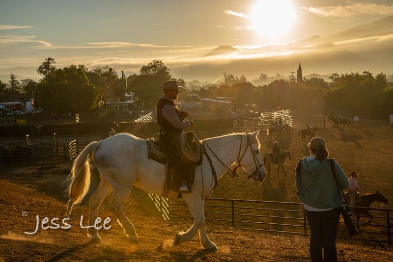 Californio-vaquaro-photos-7855(1).jpg :: Cowboys carring on the traditions of the Vaquero, Californios, Buckaroo ways.