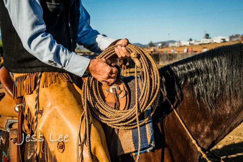 Californio-vaquaro-photos-7931(1).jpg :: Cowboys carring on the traditions of the Vaquero, Californios, Buckaroo ways.