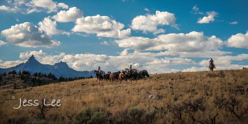 Cowboy-photos-(1).jpg