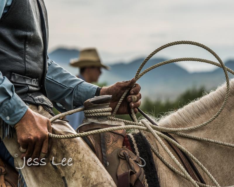 Cowboy-photos-0128(1).jpg