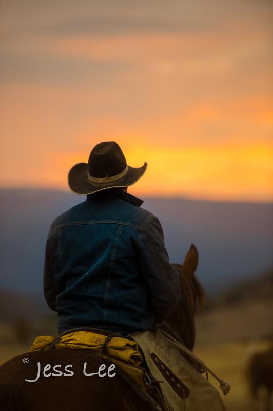 Cowboy-photos-0981(1).jpg