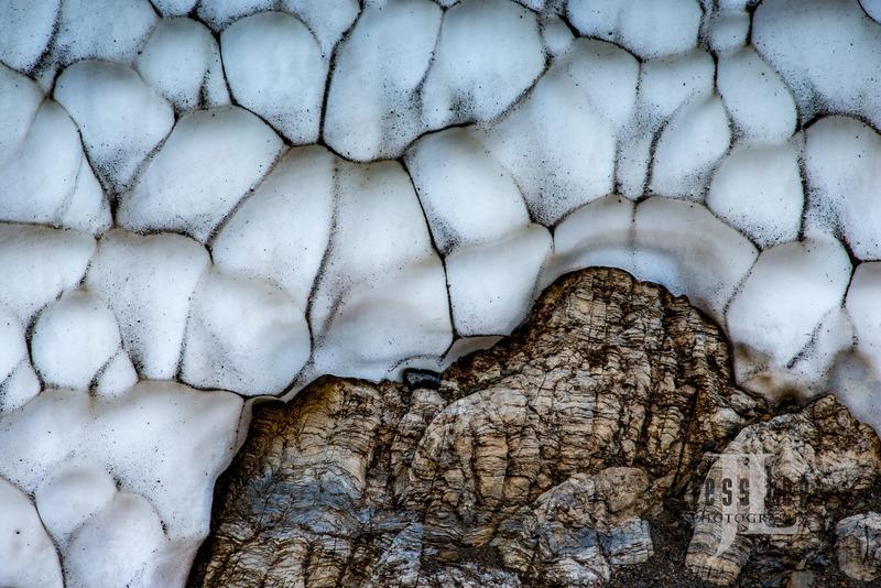 Glacier National Park-7466.jpg