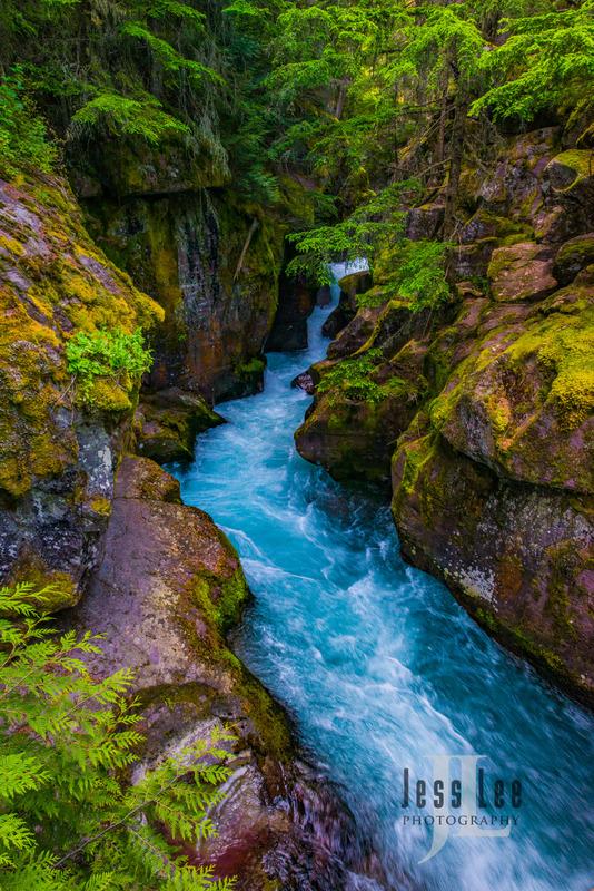 Glacier National Park-8266.jpg
