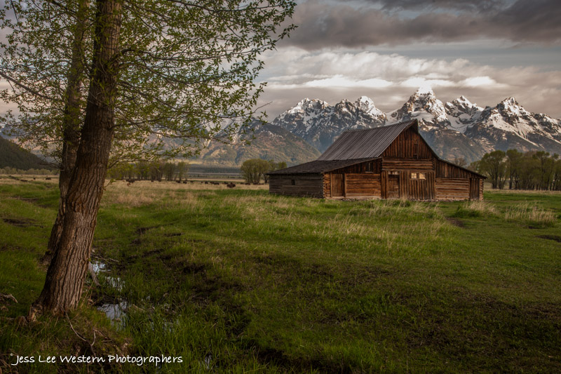 Grand-Teton-Jackson-Hole-Barn_photo-94269426.jpg