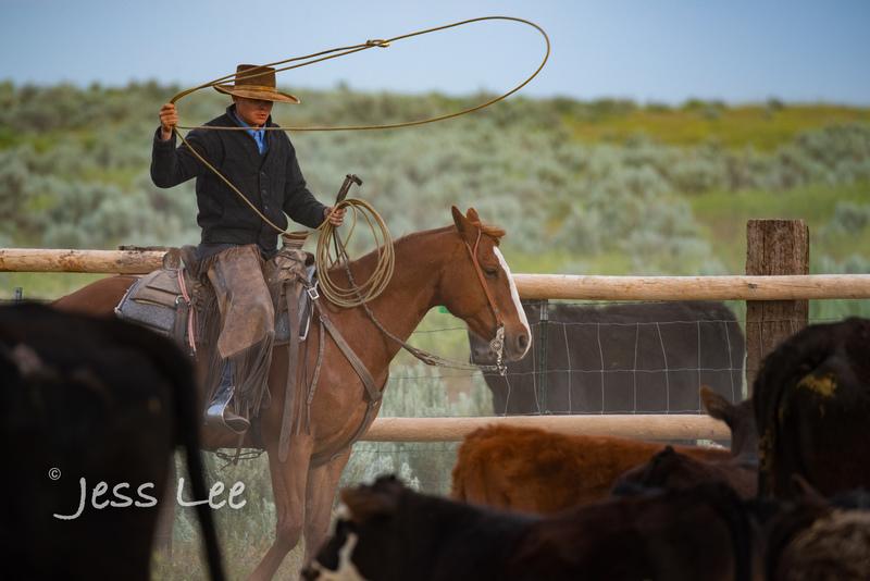 Idaho-Cowboyl-photos-1022.jpg