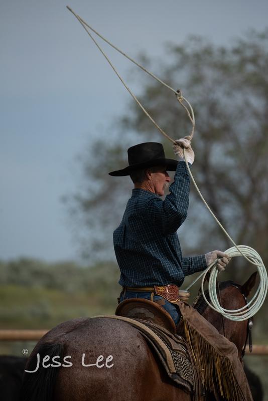 Idaho-Cowboyl-photos-1135(1).jpg