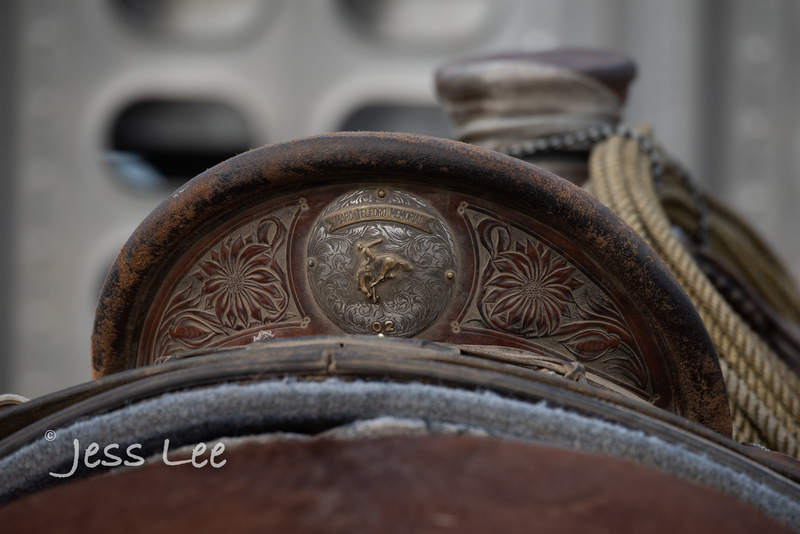 Idaho-Cowboyl-photos-1171.jpg