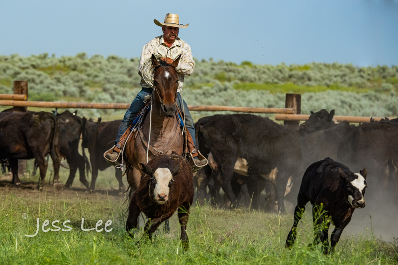 Idaho-Cowboyl-photos-1185.jpg