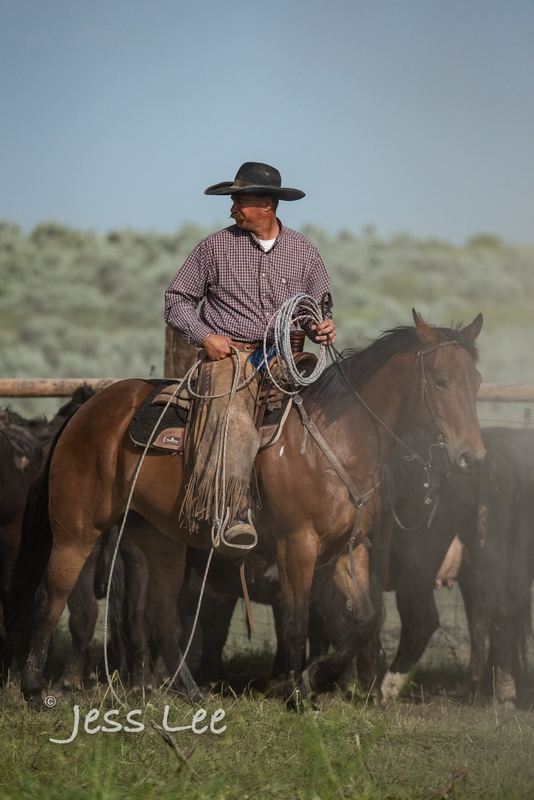 Idaho-Cowboyl-photos-1191(1).jpg