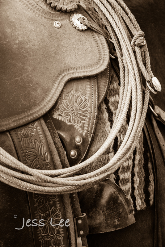 Idaho-Cowboyl-photos-2219.jpg
