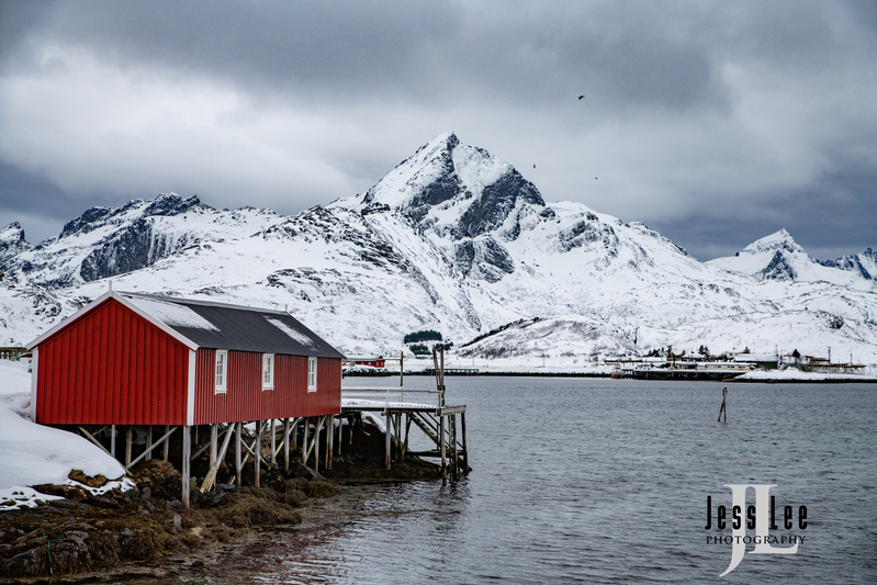 Lofoten-Winter-0115(1).jpg :: Lofoten Norway Winter