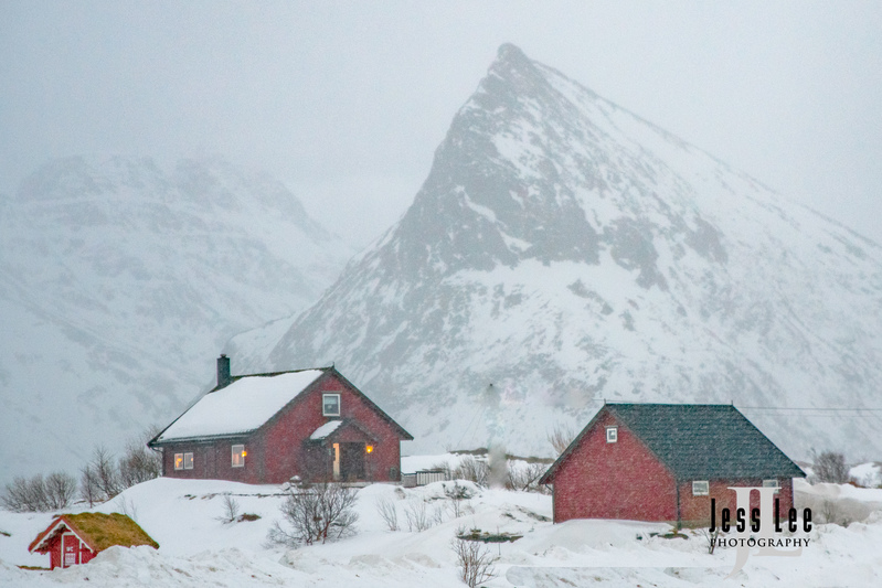 Lofoten-Winter-0306(1).jpg :: Lofoten Norway Winter
