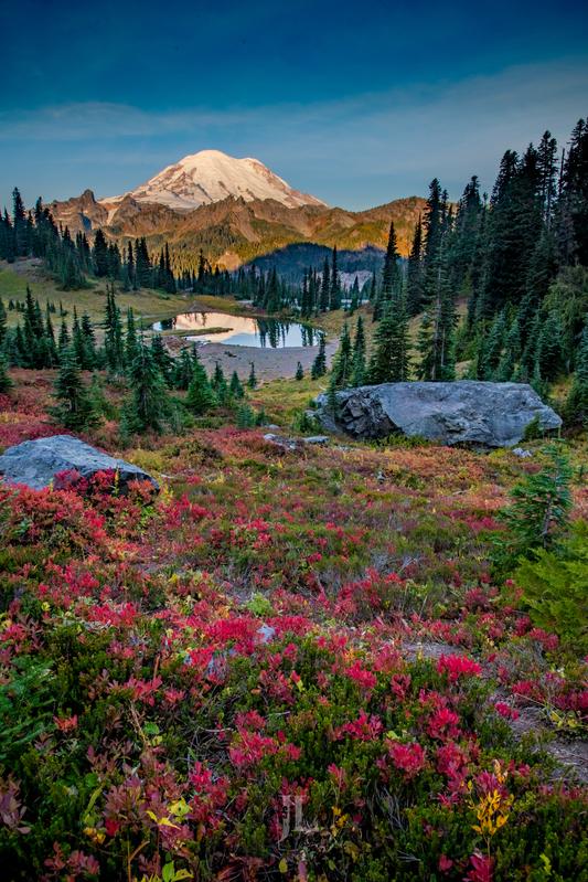 Mt-Rainier-fall_JRL539(1).jpg :: Autumn Color Mt Rainier