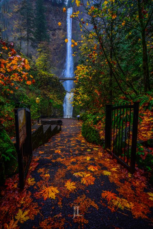 Multnomah-Waterfall-autumn-leaves_LEE4216(1).jpg :: Multnomah falls with autumn leaves exclusive luxury photo print