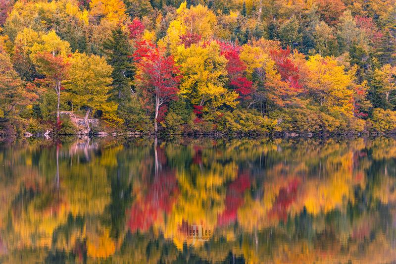 Vermont-pond-17.jpg