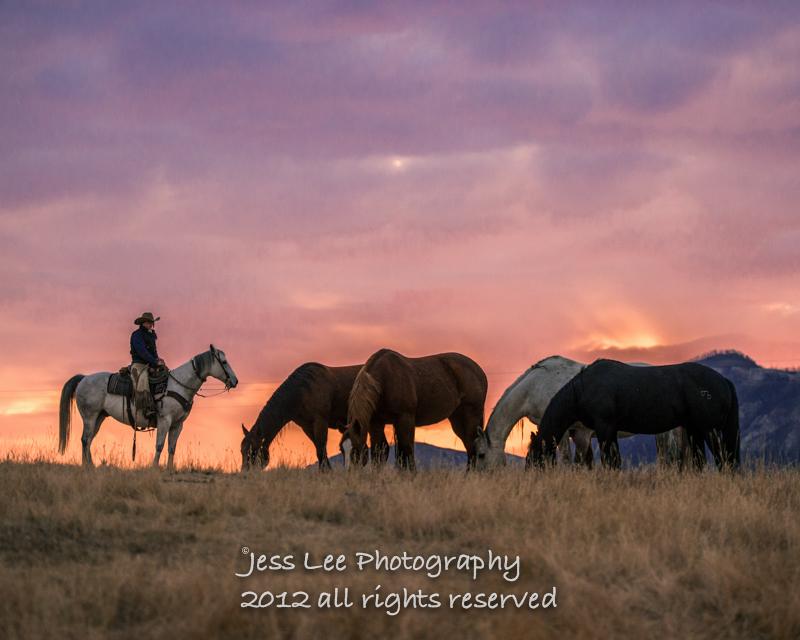 Wyoming Cowboy photo-1104.jpg