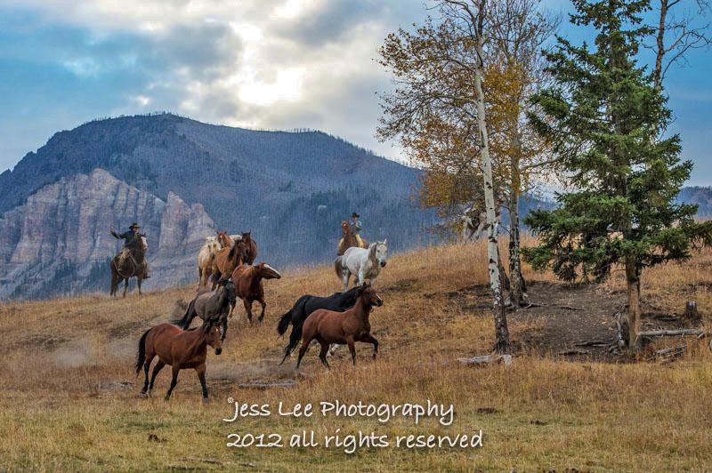 Wyoming Cowboy photo-1284-2.jpg
