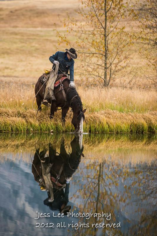 Wyoming Cowboy photo-1710.jpg
