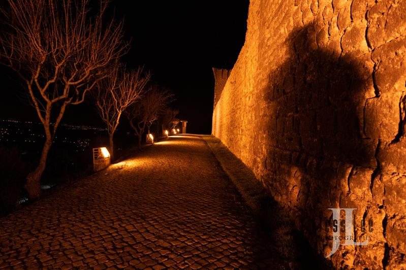 _DSC3739(1).jpg :: Photos of Portugal, horses, Lisbon, Sintra, Golega, and the culture