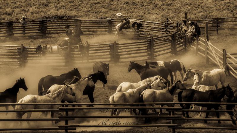 _JLP6979-Edit(3).jpg :: Fine Art Photos of Cowboys