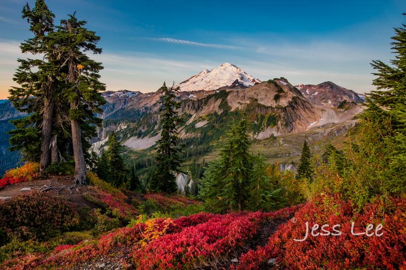 _JRL5661(1).jpg :: Autumn Limited Edition Fine Art Photo Print