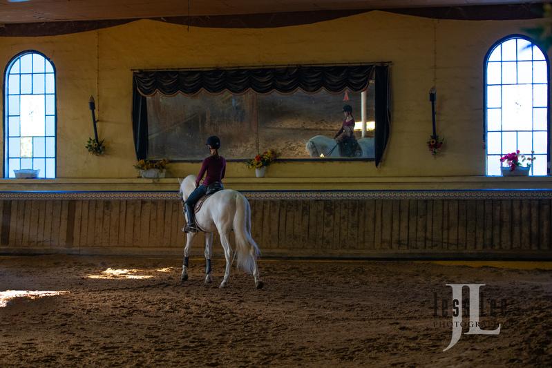 _JRL5887(1).jpg :: Photos of Portugal, horses, Lisbon, Sintra, Golega, and the culture