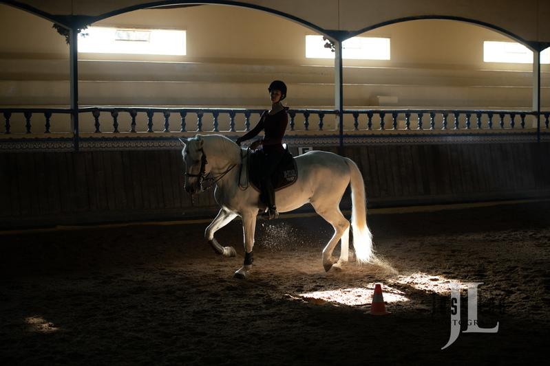 _JRL5910(1).jpg :: Photos of Portugal, horses, Lisbon, Sintra, Golega, and the culture