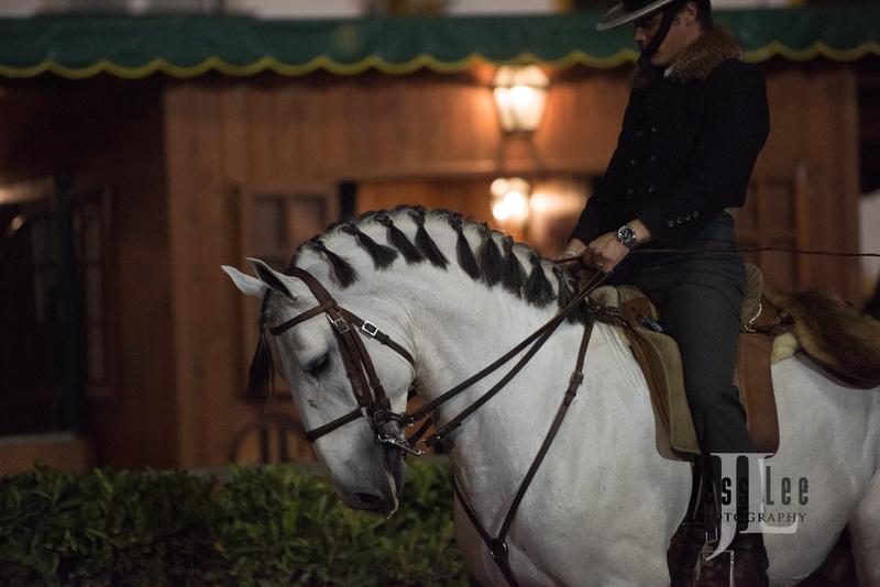 _LEE1455(1).jpg :: Photos of Portugal, horses, Lisbon, Sintra, Golega, and the culture