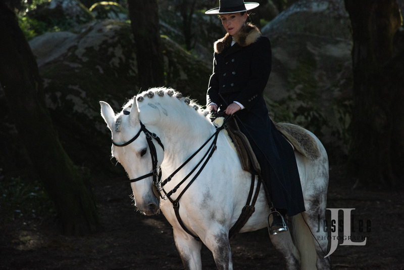 _LEE1768(1).jpg :: Photos of Portugal, horses, Lisbon, Sintra, Golega, and the culture