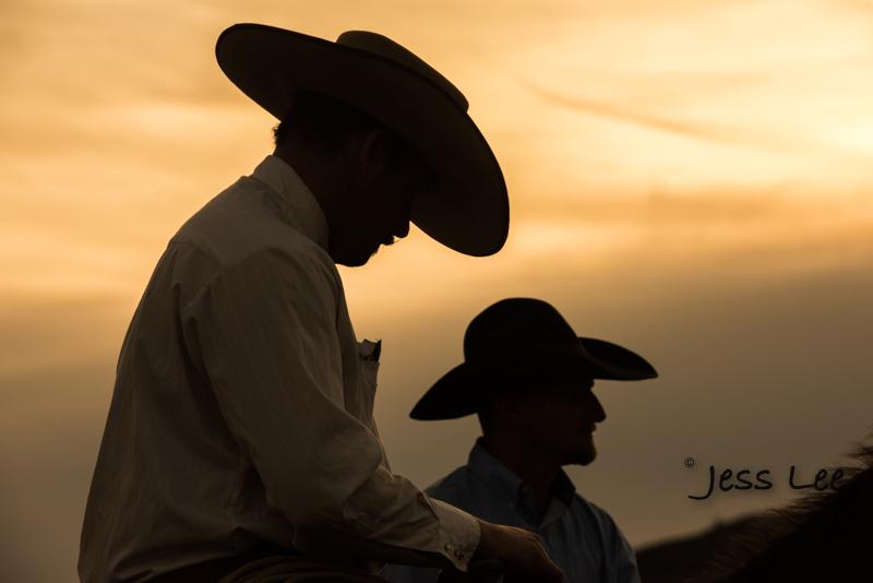 _LEE7715.jpg :: Arizona Cowboys photos