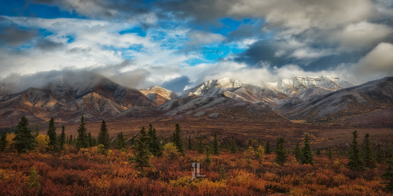 alaska-range-5313.jpg :: A photo of Denali's fall colored tundra and snow capped mountains.