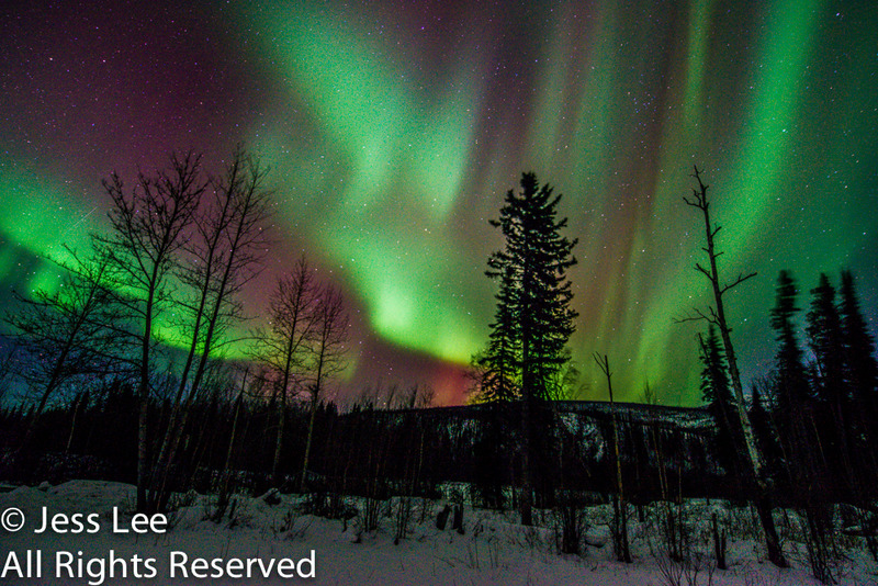 aurora max-3935.jpg