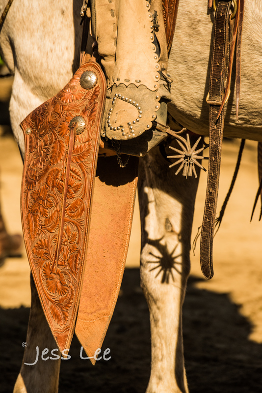 cowboy-gear-photos-1454(1).jpg :: Photos of the Equiptment Cowboy use in their work. Saddles, Spurs. Bits. ropes, cuffs, guns, photosgraphy