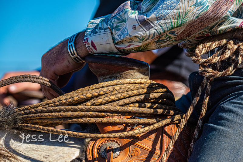 cowboy-gear-photos-1484(1).jpg :: Photos of the Equiptment Cowboy use in their work. Saddles, Spurs. Bits. ropes, cuffs, guns, photosgraphy