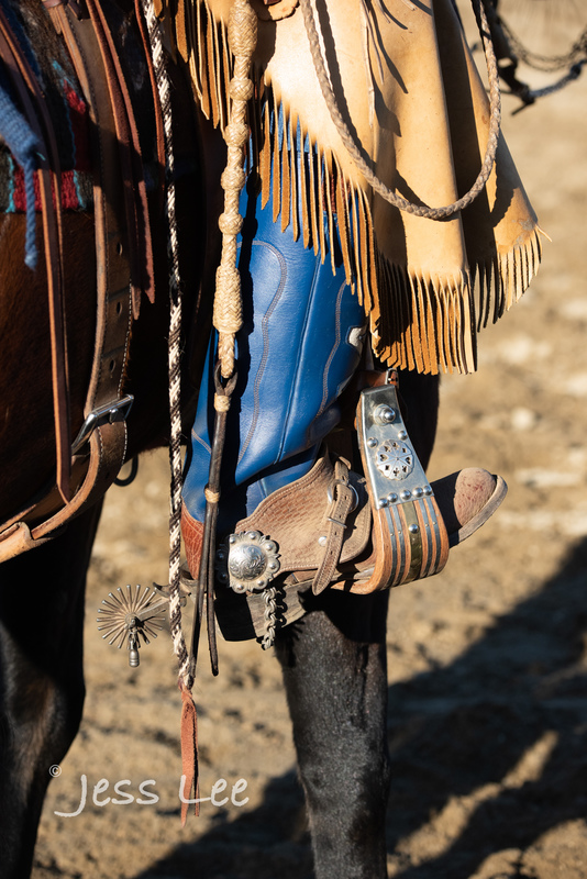 cowboy-gear-photos-1672(1).jpg :: Photos of the Equiptment Cowboy use in their work. Saddles, Spurs. Bits. ropes, cuffs, guns, photosgraphy