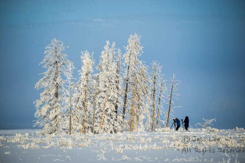 frostphotographers.jpg