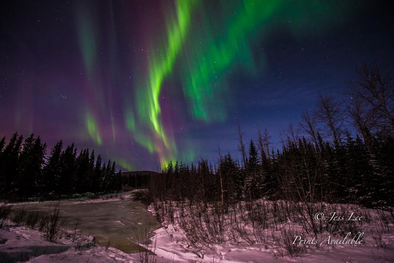 frozepond-aurora3-4997.jpg