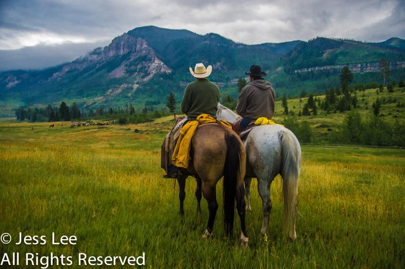pair cowboys waiting-3533.jpg