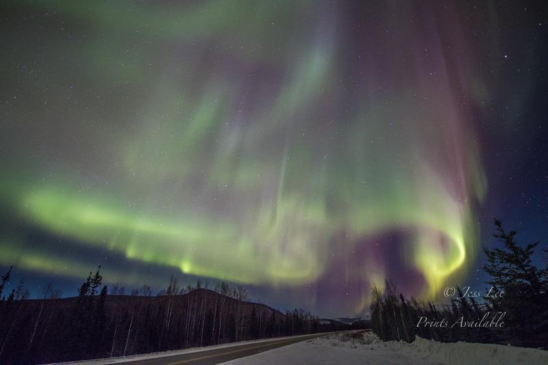 roadnorth2-_LEE4903-426d9.jpg :: Aurora Highway during Northern Lights workshop in Alaska to photograph the winter under the Aurora Belt