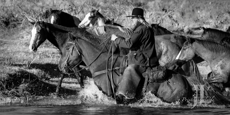 terwater-225(1).jpg :: Cowboy photo, photography,pictures