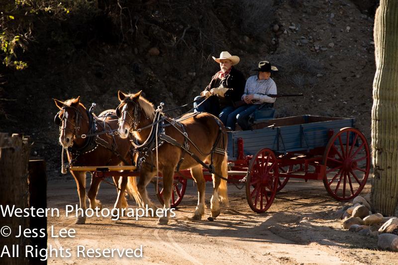 wagon-rider-7916.jpg