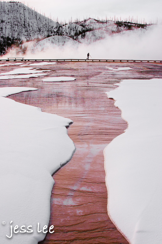 yellowstone-winter-photo-1-2-af447.jpg