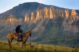 Wyoming Cowboy in high mountains
