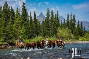 Wyoming Cowboys Crossing the river