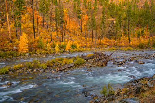 Autumn-color-flowing-river-fine-art-print_JLZ9647(1).jpg
