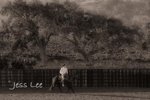 BlackandWhite-cowboy-photos-1756.jpg