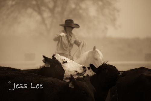 Blackandwhite-cowgirl-photos-1096.jpg