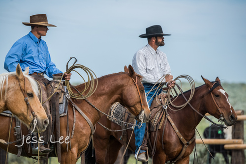 Idaho-Cowboyl-photos-1108(1).jpg
